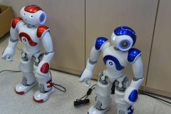 Laboratorium Robotyki - roboty Humanoidalne